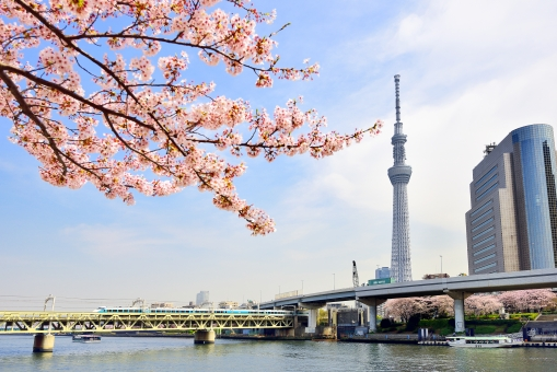 f:id:hongo-ueno-realestate:20181126184839j:plain