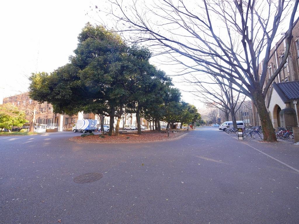 f:id:hongo-ueno-realestate:20190113142705j:plain
