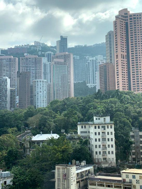 f:id:hongyoka:20201203123527j:plain