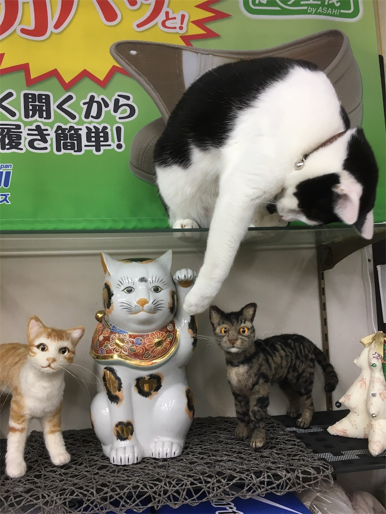 f:id:honmachisuji:20171206120040j:image