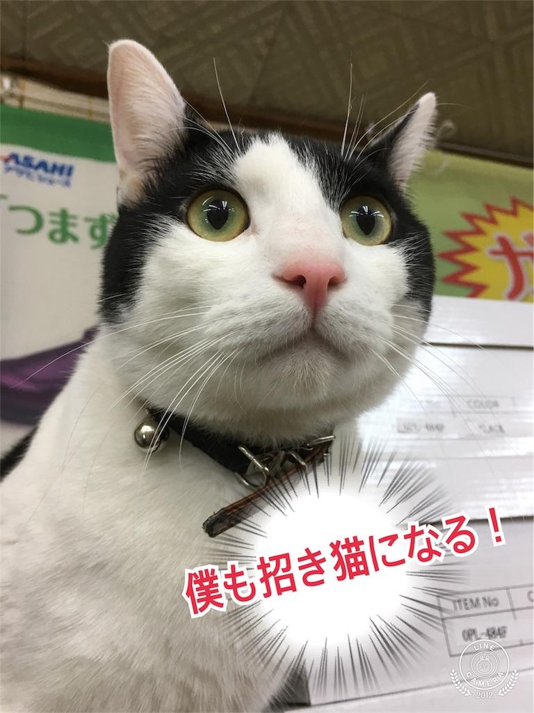 f:id:honmachisuji:20171206120126j:image
