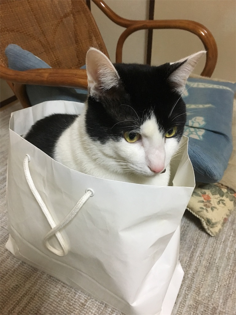 f:id:honmachisuji:20171231154840j:image