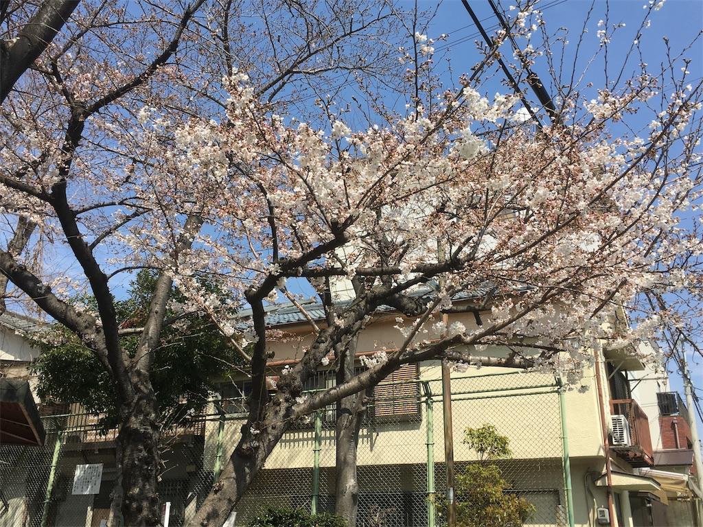 f:id:honmachisuji:20180328141426j:image