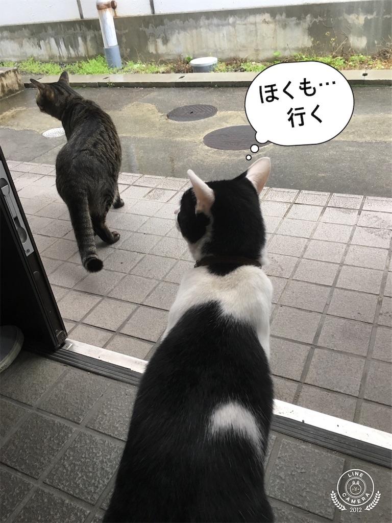 f:id:honmachisuji:20180331145107j:image