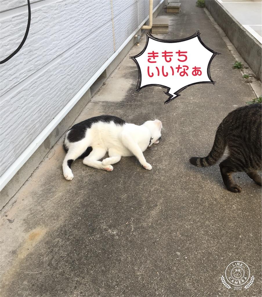 f:id:honmachisuji:20180331145114j:image