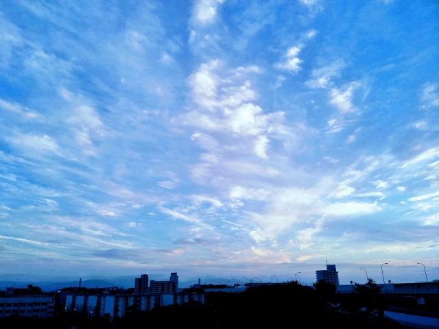 f:id:honno-yokomichi:20200608003216j:plain