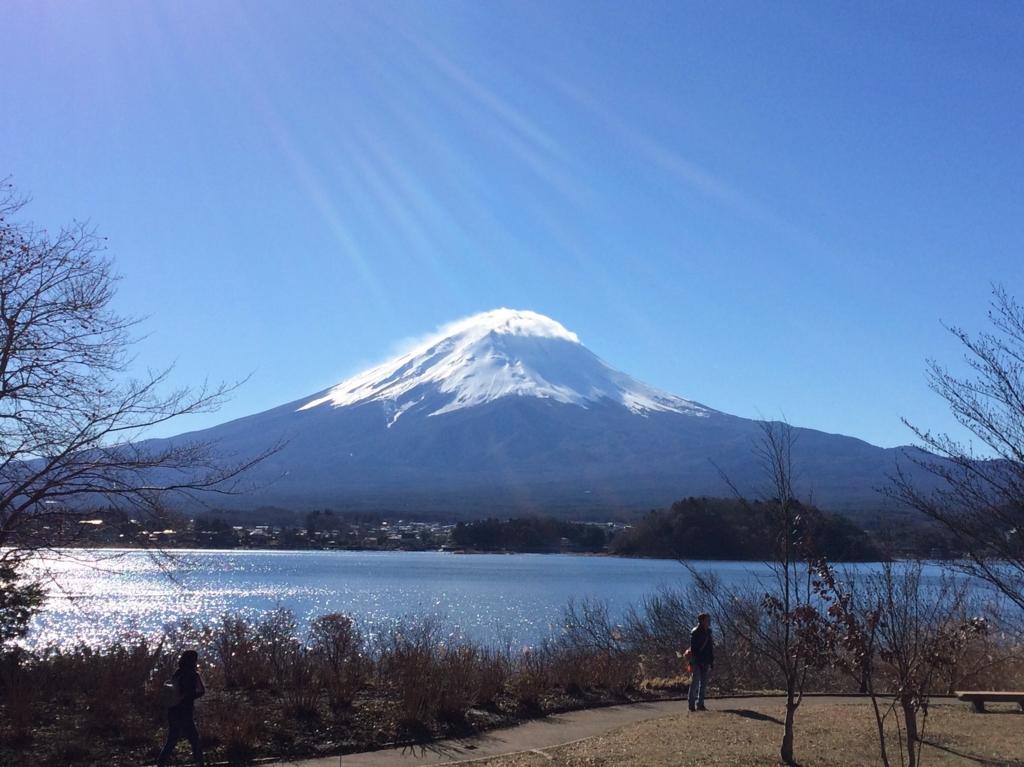 f:id:honoka-jakuseki:20170105225717j:plain