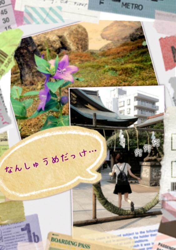 f:id:honokahonolulu:20130629211845j:image:w360