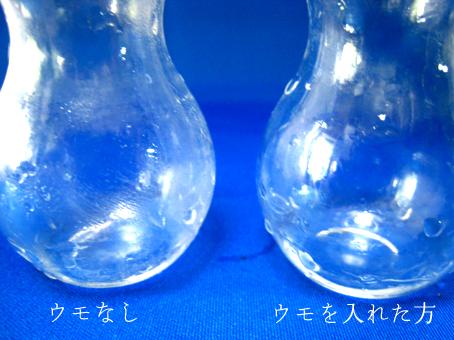 f:id:honokasha:20100622181250j:image