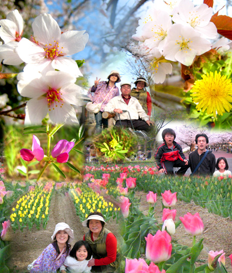 f:id:honokasha:20110411003040j:image