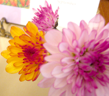 f:id:honokasha:20110911032036j:image