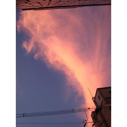 f:id:honokasha:20110914003832j:image