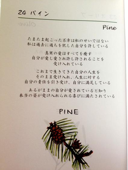 f:id:honokasha:20120603023522j:image