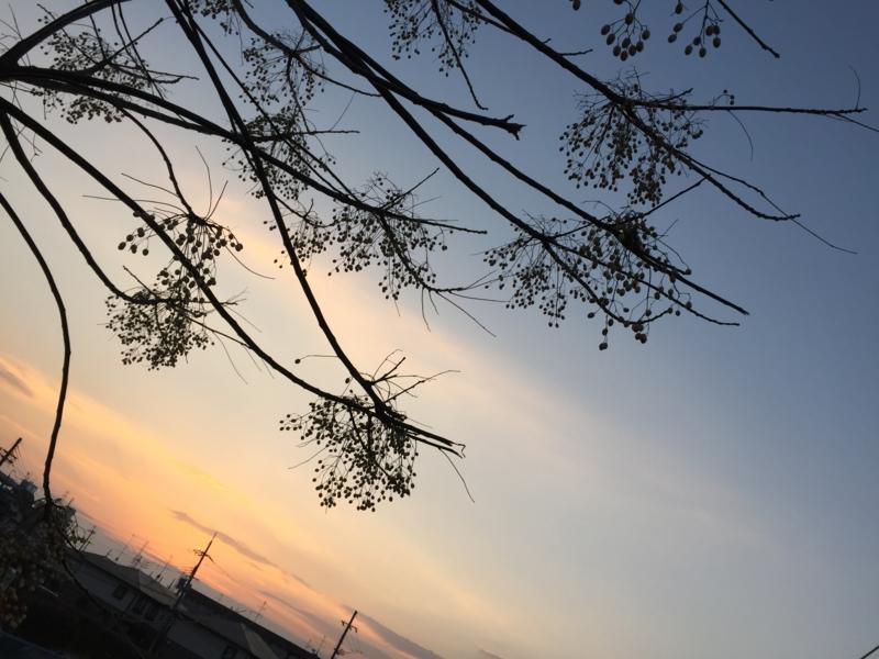 f:id:honokasha:20170102164208j:image