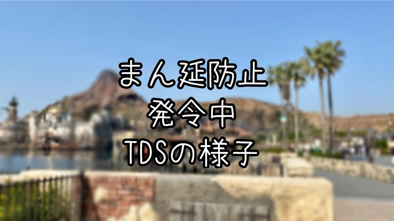 f:id:honopooh-disney:20210421185439j:image