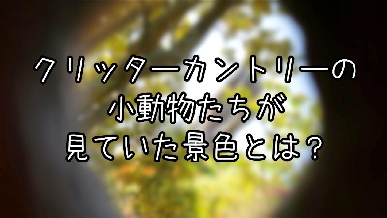 f:id:honopooh-disney:20210618123832j:image
