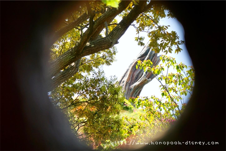 f:id:honopooh-disney:20210618130529j:image