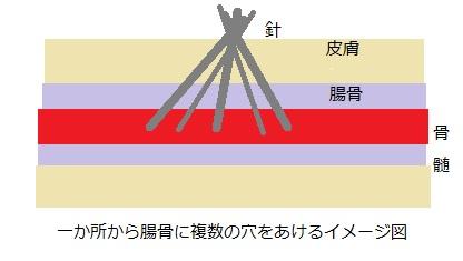 f:id:hoozukireiko:20190513234944j:plain