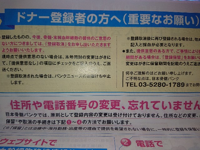 f:id:hoozukireiko:20190707153422j:image