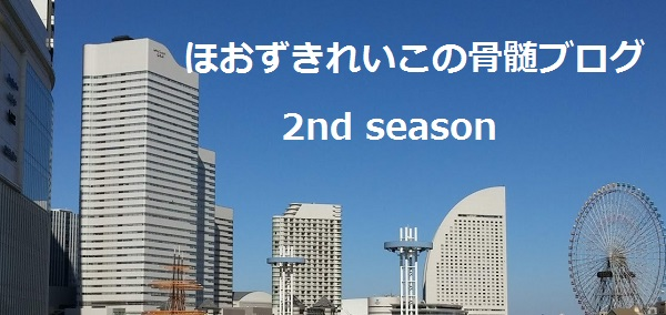 f:id:hoozukireiko:20190710215922j:plain