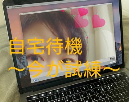 f:id:hoozukireiko:20200420200451j:plain