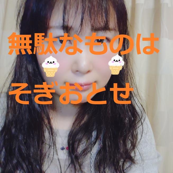 f:id:hoozukireiko:20200519202216j:plain