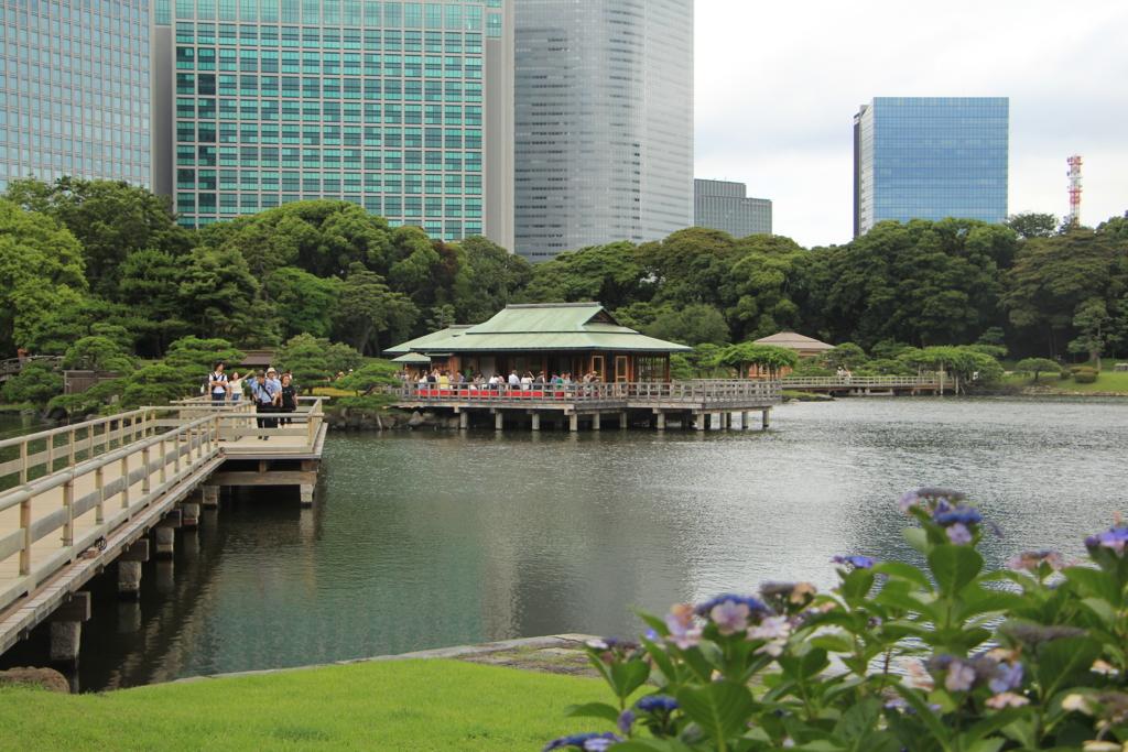 f:id:hop_step_nikubanare:20170116181357j:plain