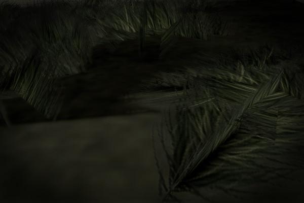 京都府八幡市のやばい竹薮