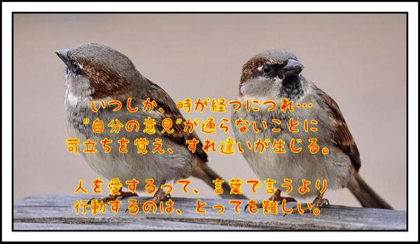 f:id:horii888888:20190912054742p:plain