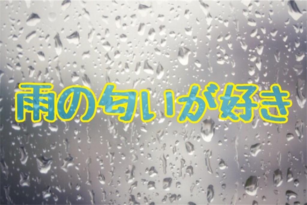 f:id:horisegawa:20190707195249j:image