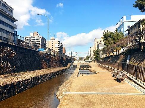 f:id:horitakadaikichi:20170126170723j:plain