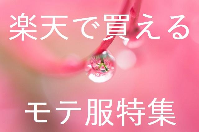 f:id:horitsukiko:20161217073220j:plain