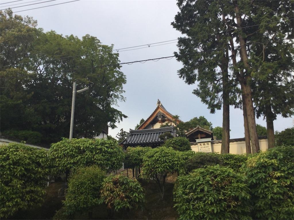 f:id:horitsukiko:20170516173426j:image