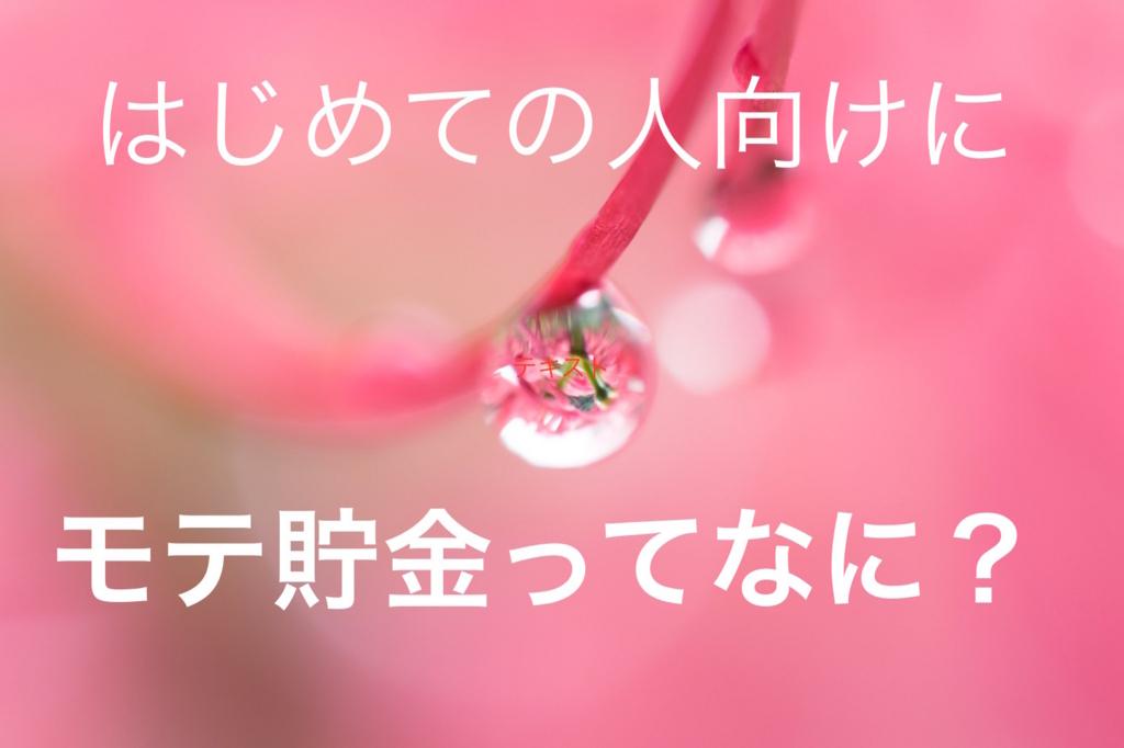 f:id:horitsukiko:20170605061552j:plain