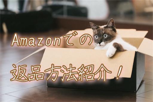f:id:horitsukiko:20180114114802j:image