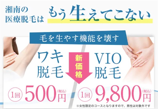 f:id:horitsukiko:20201227155941j:image