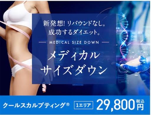 f:id:horitsukiko:20210514163840j:image