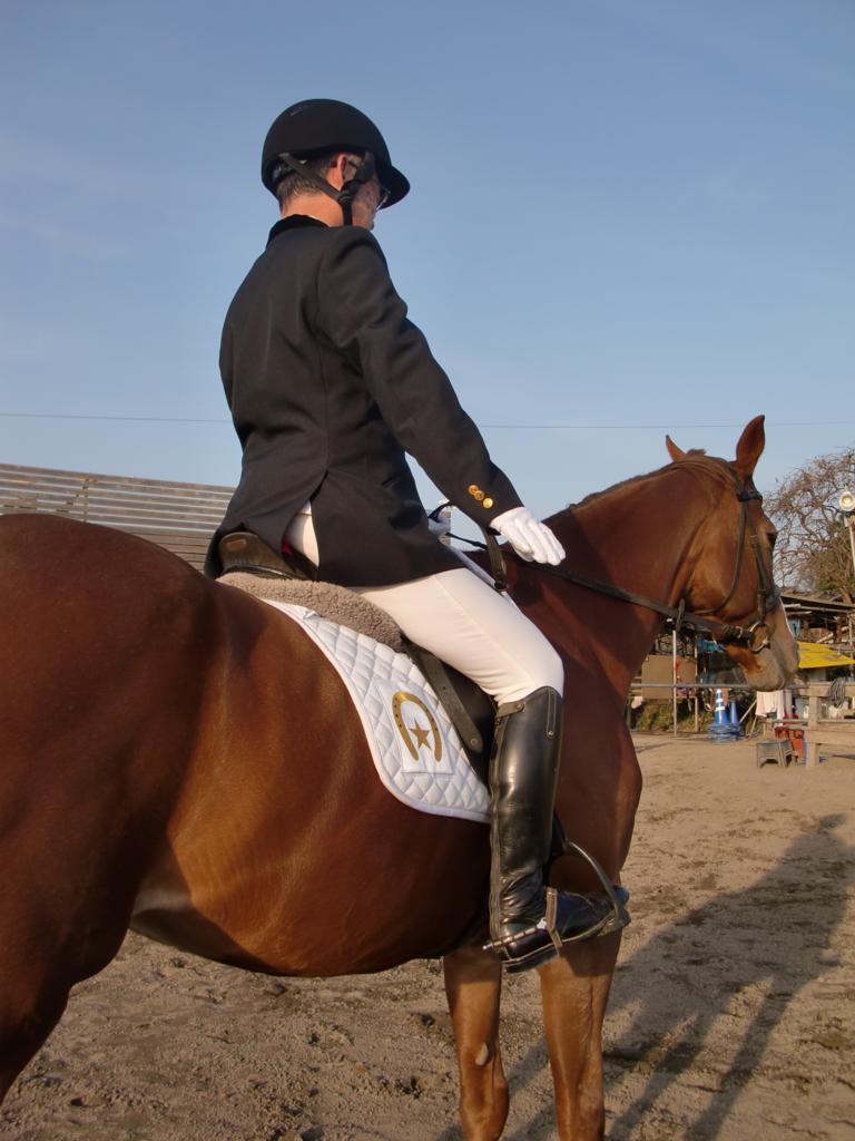 f:id:horseback:20161222193832j:plain