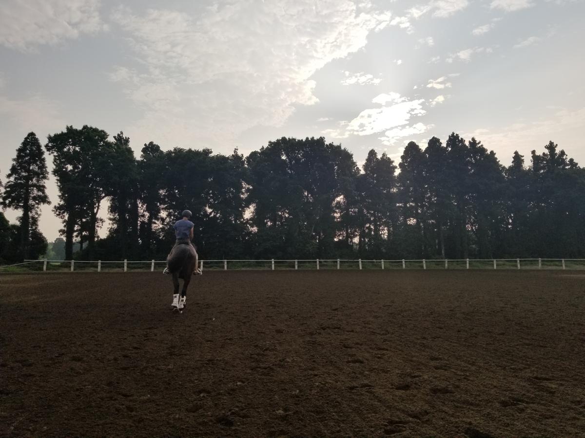 f:id:horseball:20190731191828j:plain
