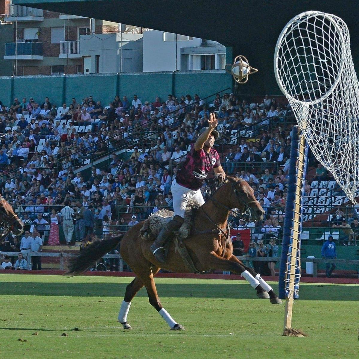 f:id:horseball:20200204213025j:plain