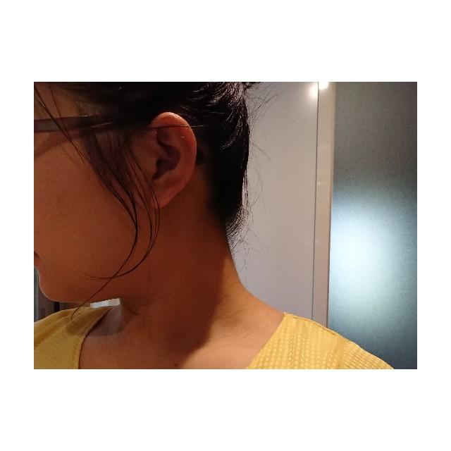 f:id:horumon_lady:20190626212032j:plain