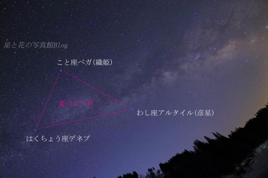 f:id:hoshi-hana:20170803205030j:plain