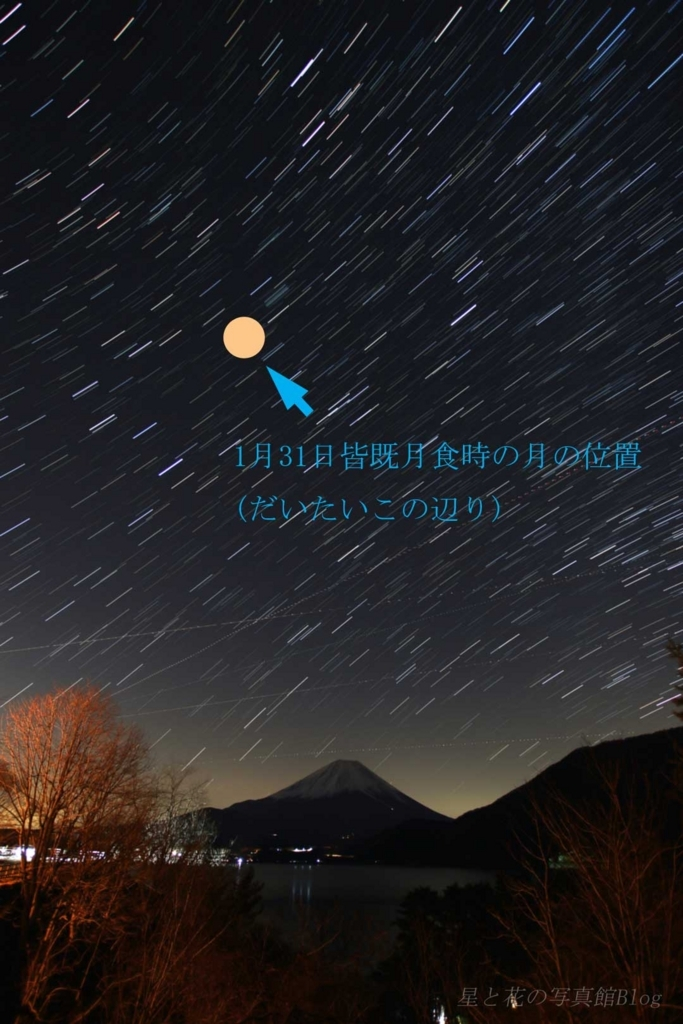 f:id:hoshi-hana:20180121232047j:plain
