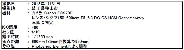 f:id:hoshi-hana:20180203005832j:plain