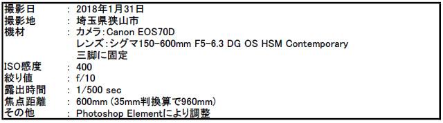 f:id:hoshi-hana:20180203010001j:plain