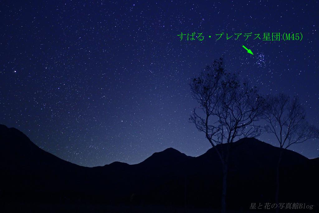 f:id:hoshi-hana:20181202205956j:plain
