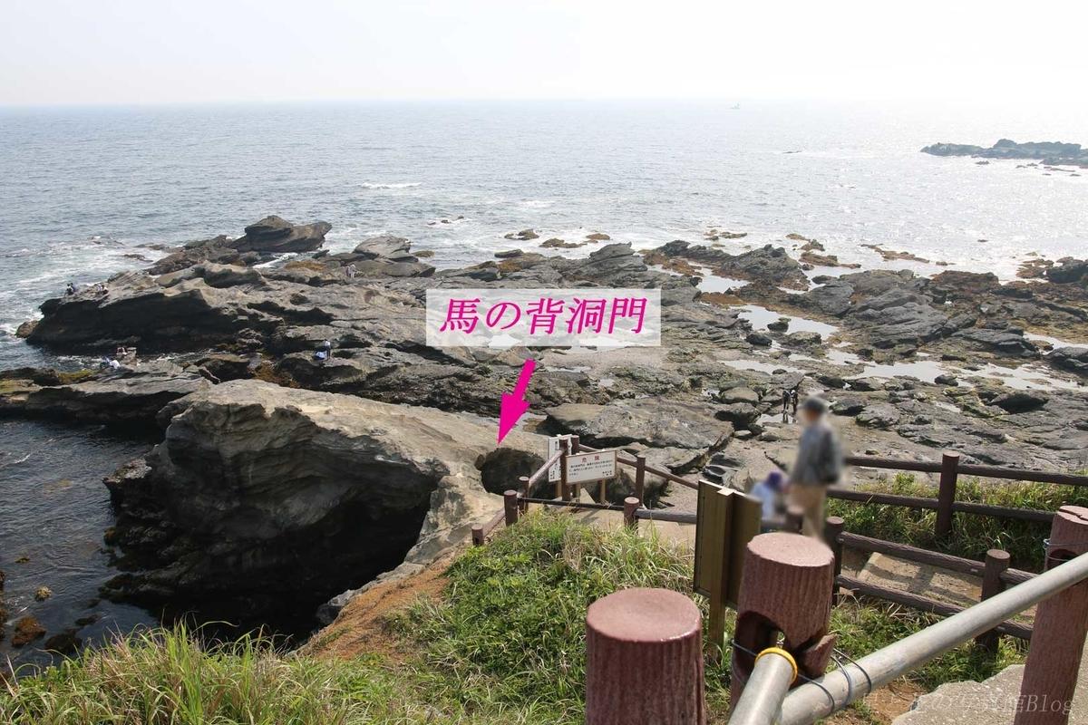 f:id:hoshi-hana:20190630021442j:plain