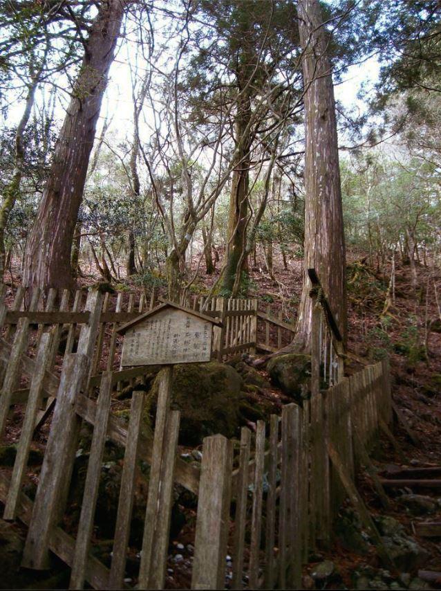 f:id:hoshi-no-shizuku-rokko:20170128122825j:plain