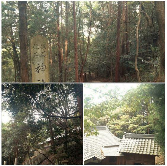 f:id:hoshi-no-shizuku-rokko:20170128131244j:plain