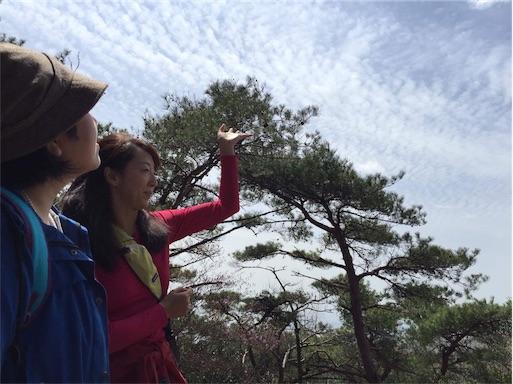 f:id:hoshi-no-shizuku-rokko:20170422235431j:image
